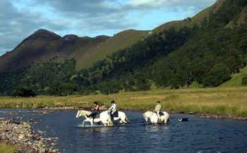 Pony Trekking2