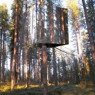Harads-tree-hotel-1_OTBE7_58