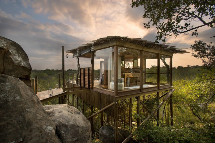 Treehotel-in-South-Africa